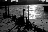 Coney Island Creek Ship Graveyard