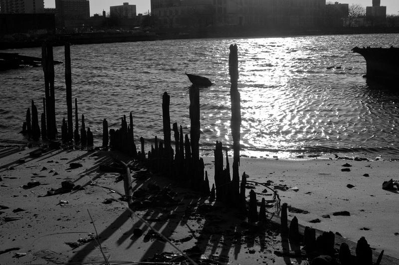 Coney Island Y