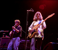 The Feelies @ Wellmont Theater